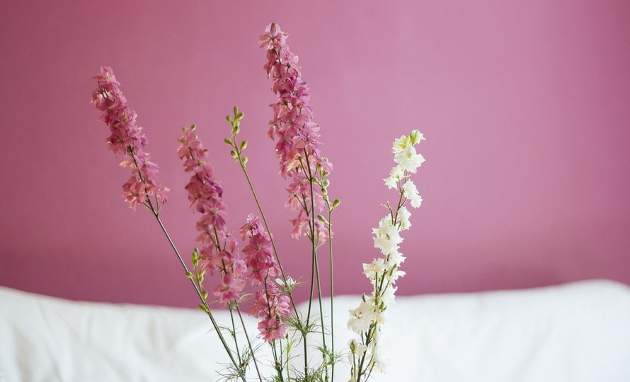 flowers-pink-large