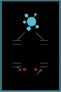 La-Antigua-Lavandera-Molecula de detergente